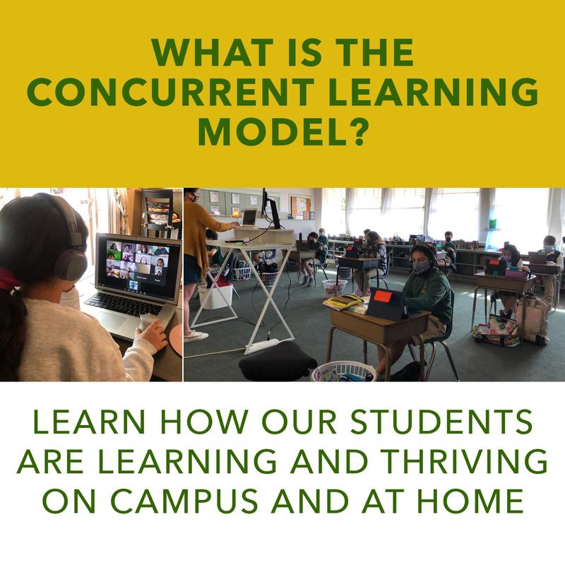 Article_ConcurrentLearning